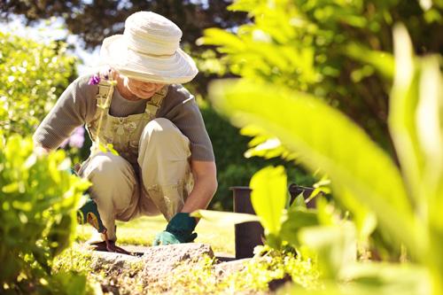Senior-Gardening